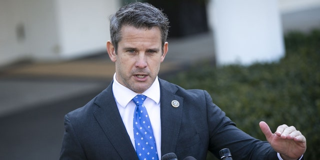 Kinzinger launches new PAC to 'take back' GOP from Trump
