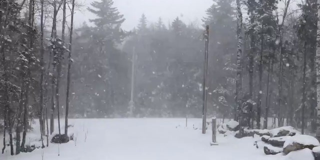 """Several inches of """"light and fluffy"""" snow accumulation near Readsboro, Vermont can be seen on Saturday, May 9, 2020."""