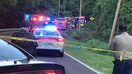 Missouri brothers, ages 6 and 7, die in fiery wreck after taking grandparents' car for joy ride: reports