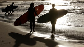 Australian teenager, 15, killed in shark attack while surfing, 2nd such death in a week: reports