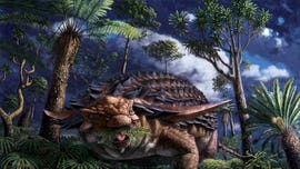 Incredible discovery shows 110M-year-old dinosaur's last meal preserved