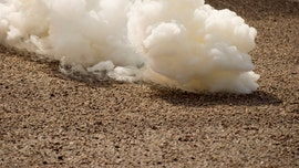 Tear gas, projectile canisters can pose serious injury, experts say