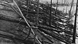 Tunguska event may have been caused by iron asteroid that went back into space, researchers say