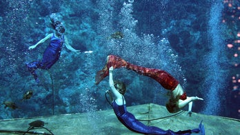Florida's Weeki Wachee, known for its mermaids, dissolved 54 years after its creation