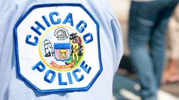 Chicago cop shot while responding to domestic violence call; suspect in custody