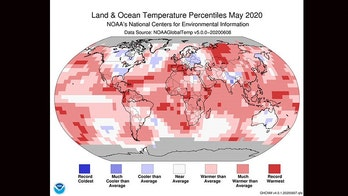 May 2020 tied the hottest May on record, forecasters say