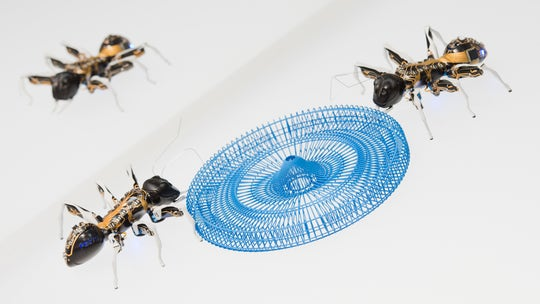 How swarms of autonomous insect robots could help explore other planets