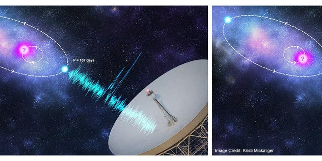 Artist's impression of an orbital modulation model where the FRB progenitor (blue) is in an orbit with a companion astrophysical object (pink). (Credit: Kristi Mickaliger)