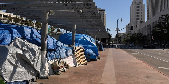 A homeless encampment atop the Main Street overpass of the 101 freeway during the coronavirus outbreak in downtown Los Angeles. (AP Photo/Mark J. Terrill, File)