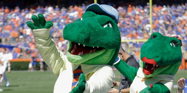 In this Nov. 7, 2015, file photo, Albert and Alberta, the mascots for Florida, do the gator chomp before the first half of an NCAA college football game against Vanderbilt in Gainesville, Fla. (AP Photo/John Raoux, File)