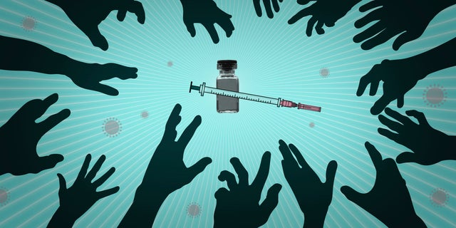 About a dozen different vaccines are in various stages of testing worldwide