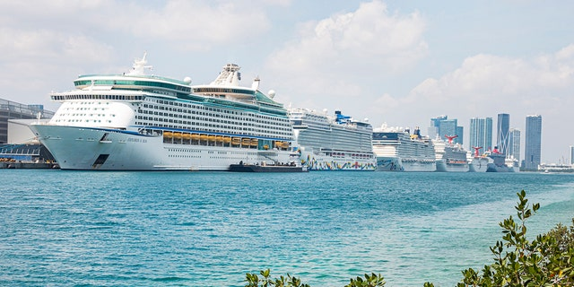 A row of cruise ships is seen docked outside of Port Miami amid the temporary suspension of operations.