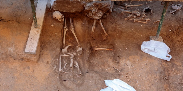 20 skeletons have been discovered at the Valladolid excavation site. (Pacos Heras)