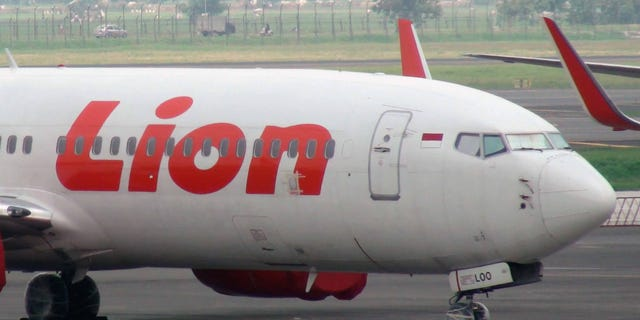 "On its website, Lion Air posted a statement which explained, ""Lion Air Group"