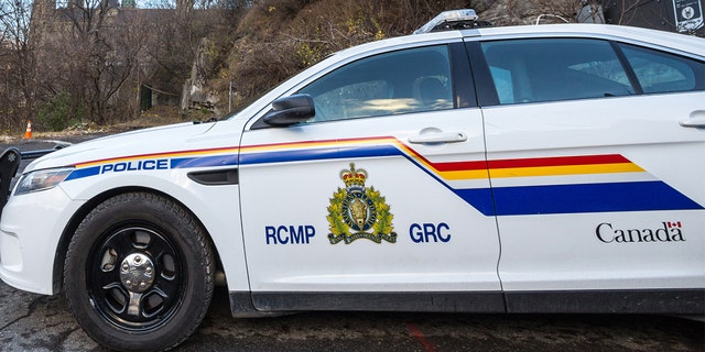 Police in Nova Scotia shoot pit bull after person killed in attack