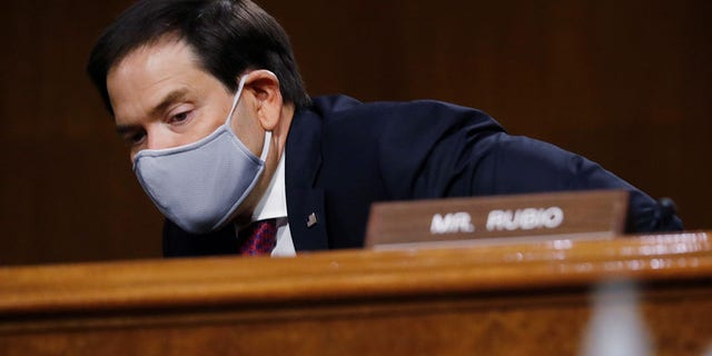 US Senator Marco Rubio (R-FL) arrives at a Senate Investigation Committee nomination for interrogation.  John Ratcliffe (R-TX), on Capitol Hill in Washington, USA, May 5, 2020. Andrew Harnik / Pool via REUTERS - RC2EIG91O6GI