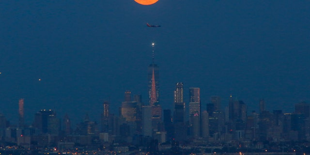 The Strawberry Moon rises over lower Manhattan and One World Trade Center on June 06, 2017, in Montclair, New Jersey - file photo.