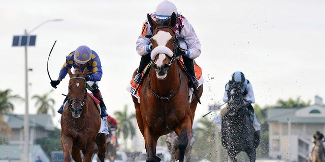 In this March 28, 2020, image provided by Gulfstream Park, Tiz the Law, riddren by Manuel Franco, foreground, runs in the Florida Derby horse race at Gulfstream Park in Hallandale Beach, Fla.  (Ryan Thompson/Coglianese Photos, Gulfstream Park via AP)