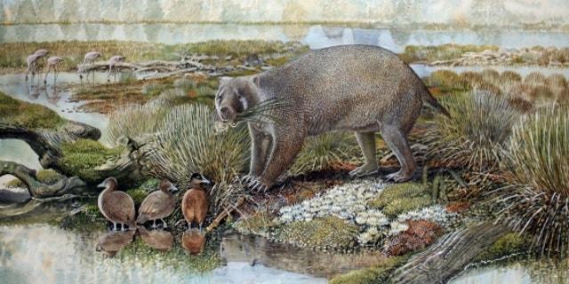 An artist's impression of Mukupirna nambensis.