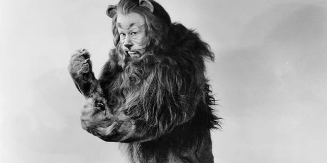 Bert Lahr as the Cowardly Lion in a scene from the film 'The Wizard Of Oz', 1939.