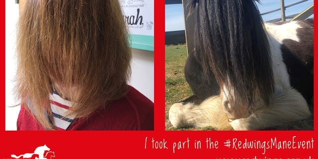 positive news Redwings Horse Sanctuary, which takes care of 1,500 horses at its five visitor centers across the U.K., came up with the funny challenge as a way of continuing to fundraise while their centers are closed.
