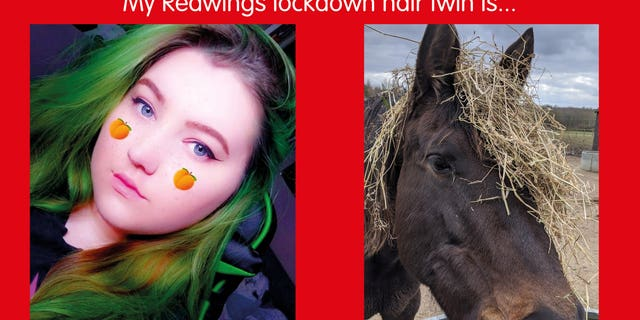 positive news Redwings staff have even managed to find a match for one woman who had died her hair a bright green color.