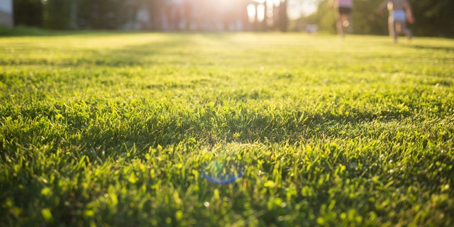 """Midday sunlight is capable of inactivating 90 percent or more of the SARS-CoV-2 virus after 34 minutes of exposure, a recent study found.<br data-cke-eol=""""1""""> (iStock)"""