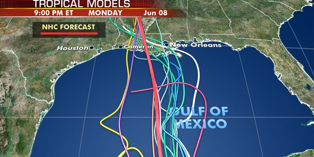 The forecast models on where Tropical Storm Cristobal is going next.