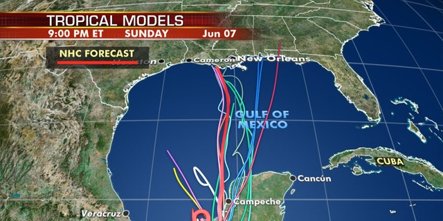 Forecast models show where Tropical Storm Cristobal may go int he next week.