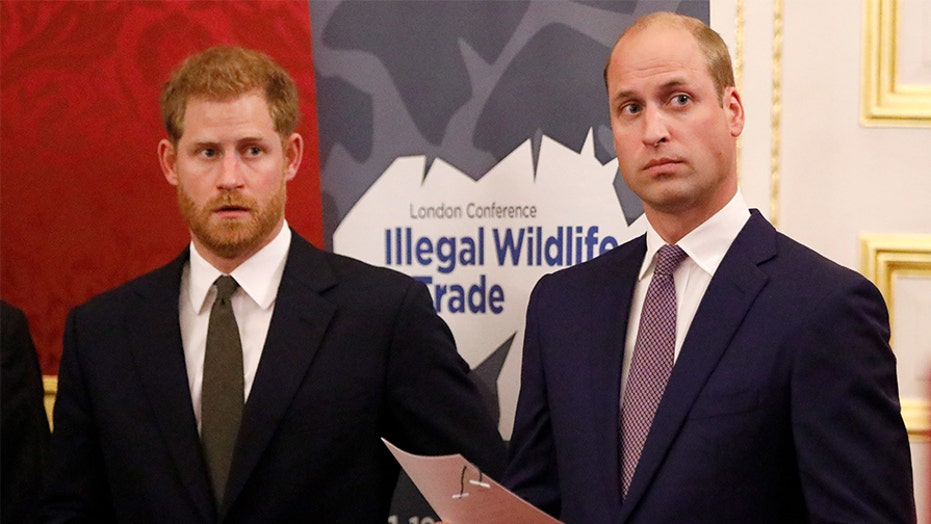Prince William 'was really hurt' after Prince Harry's shocking 'Megxit' announcement, royal expert claims