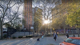 Illegal fireworks in NYC park leads to stabbing of 5 people