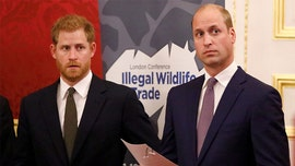 Prince William, Prince Harry are keeping Zoom chats formal due to security concerns, source claims