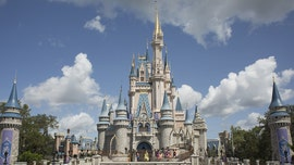Twitter users react to Cinderella Castle makeover at Disney World