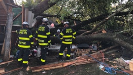Tree falls on Maryland garage during 'very brief' storm, 19 sent to hospitals