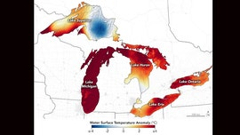 Great Lakes temperatures soar to 'basically bathwater' amid summer heat wave