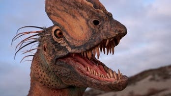 'Jurassic Park' got nearly everything wrong about Dilophosaurus, new study says