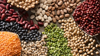 Diets higher in protein, particularly plant protein, linked to lower rates of early death: study