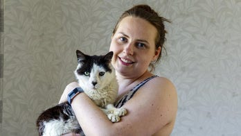 Pet cat reunited with its family 12 years after it escaped
