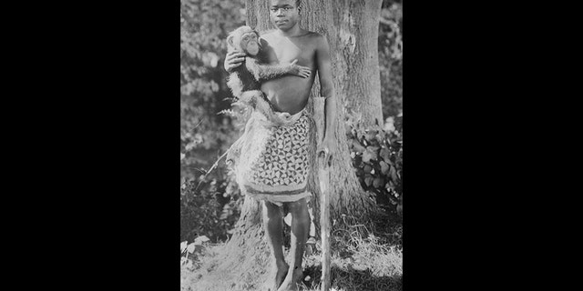 """This photo, circa 1915, from the Library of Congress, shows Ota Benga. The organization that runs New York's Bronx Zoo is apologizing for racist episodes in the zoo's past, including putting Ota Benga, a Central African man, on display in the Monkey House in 1906. """"In the name of equality, transparency, and accountability, we must confront our organization's historic role in promoting racial injustice as we advance our mission to save wildlife and wild places,"""" officials with the Wildlife Conservation Society said in a statement Wednesday, July 30, 2020. (Library of Congress, Prints & Photographs Division via AP)"""