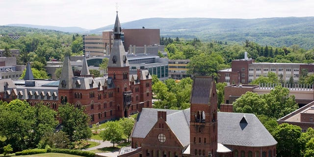 Cornell University buildings viewed from McGraw Tower.