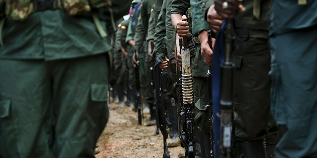 "Members of the Revolutionary Armed Forces of Colombia (FARC) guerrillas are seen at the ""Alfonso Artiaga"" Front 29 FARC encampment in a rural area of Policarpa, department of Narino in southwestern Colombia, on January 17, 2017. (LUIS ROBAYO/AFP via Getty Images)"