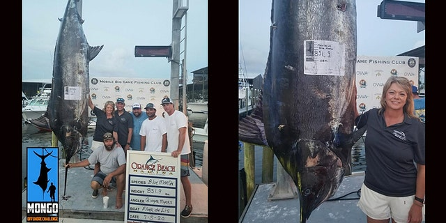 Ginger Myers, pictured, reeled in an 851.9-pound blue marlin during an Alabamafishing tournament on Saturday, in a multiple pending-record catch.