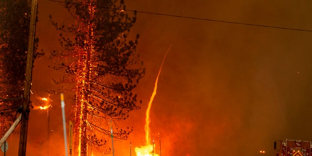 A fire whirl shoots into the sky as flames from the Hog fire jump highway 36 about 5 miles from Susanville, California on July 20.