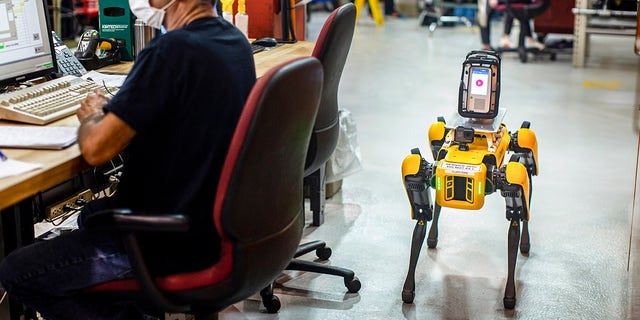 Ford's new four-legged robots to increase production efficiency
