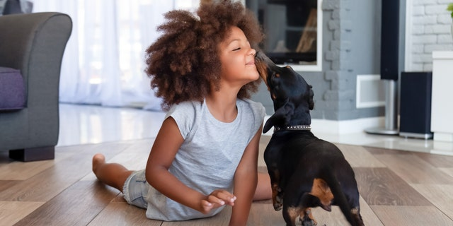With pet adoptions and fostering on the rise through the pandemic, it might just be the perfect summer to expand the family with a playful pup.