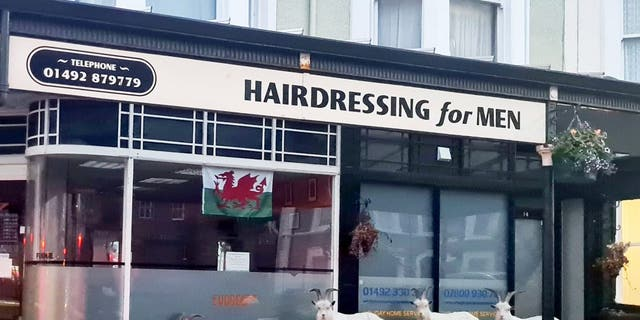 Mountain goats in Llandudno headed to a barbers in anticipation of a quick trim. (Credit: SWNS)""