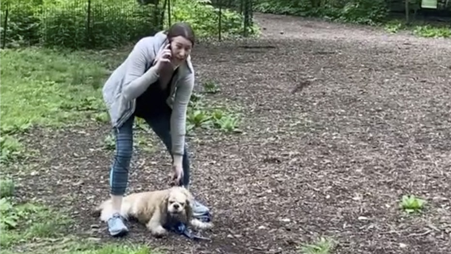 NYC judge drops charges against Amy Cooper, woman in Central Park bird-watcher incident