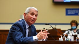 Fauci 'seriously doubts' Russia's coronavirus vaccine is effective