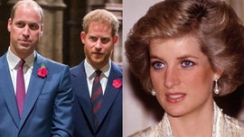 Princess Diana would've made Prince Harry, Prince William 'work through their issues', author claims