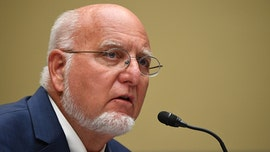Neglecting coronavirus safety measures could lead to 'worst fall,' CDC director warns